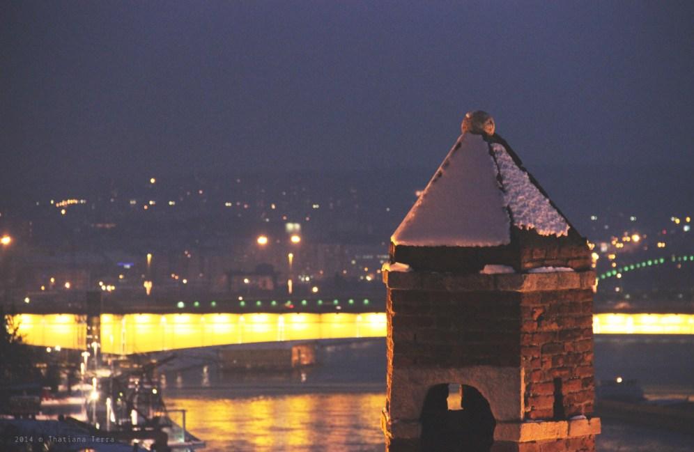Belgrade: Sunset and friends (5)