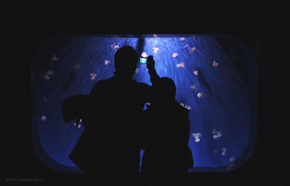 Genova: Underwater (2)