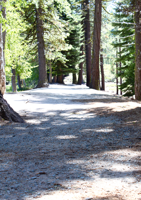 Lassen Volcanic National Travel Guide Manzanita Lake Trail