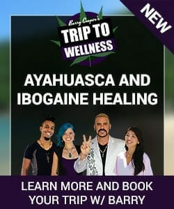 Ibogaine and Ayahuasca Trip to wellness with barry cooper
