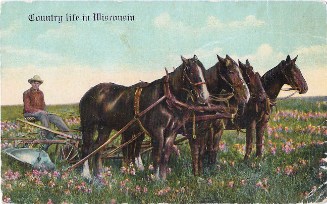 Postcard... Man resting on a plow in Wisconsin