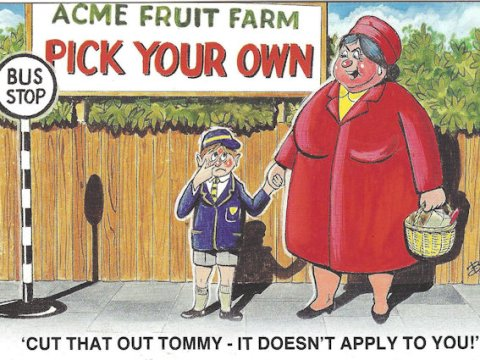 Funny comic PICK YOUR OWN nose-picking postcard