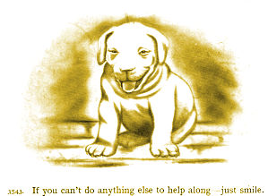 Dog says if you can't help, smile!