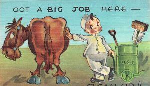 Horse poop sweeper hard at work