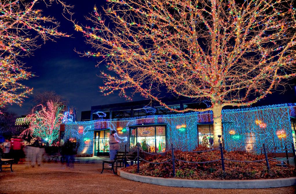 LED tree & aquarium