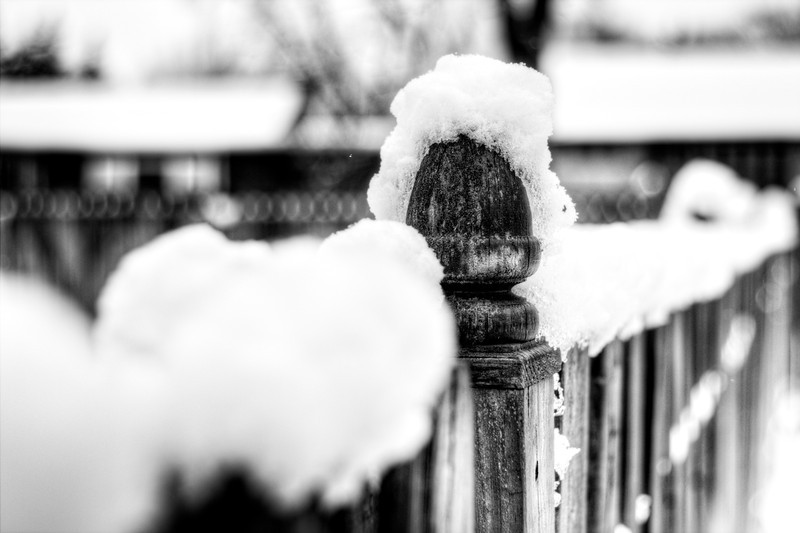 Snow fence and the water droplet