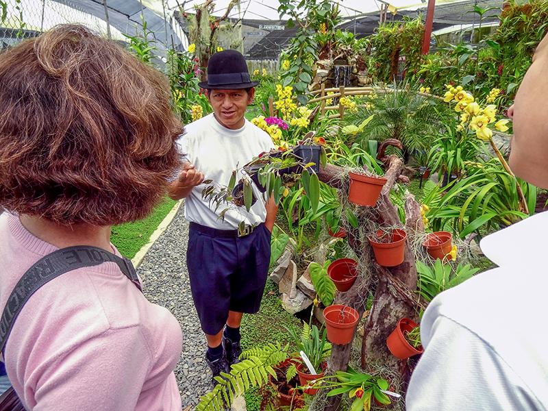 orchid farm in Gualaceo, Ecuador
