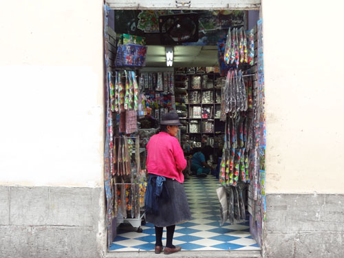 Indian woman shopkeeper