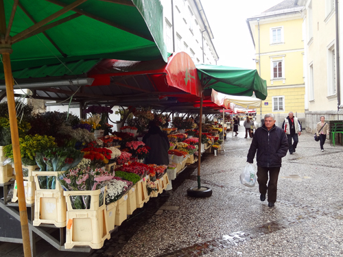 Flower market outside St. Nicholas Cathedral Ljubljana