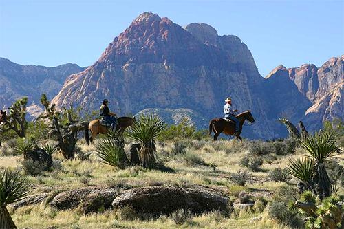 Las Vegas is Cowboy Trail Rides