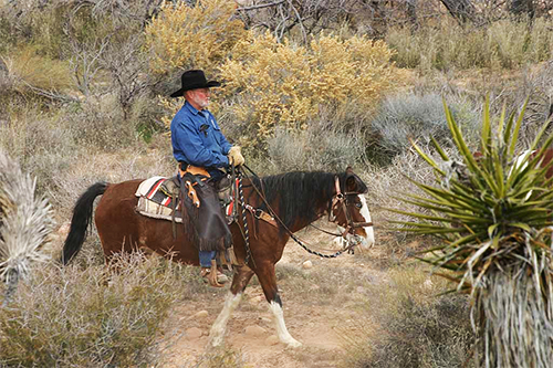 a cowboy on he horse on  Cowboy Trail Rides