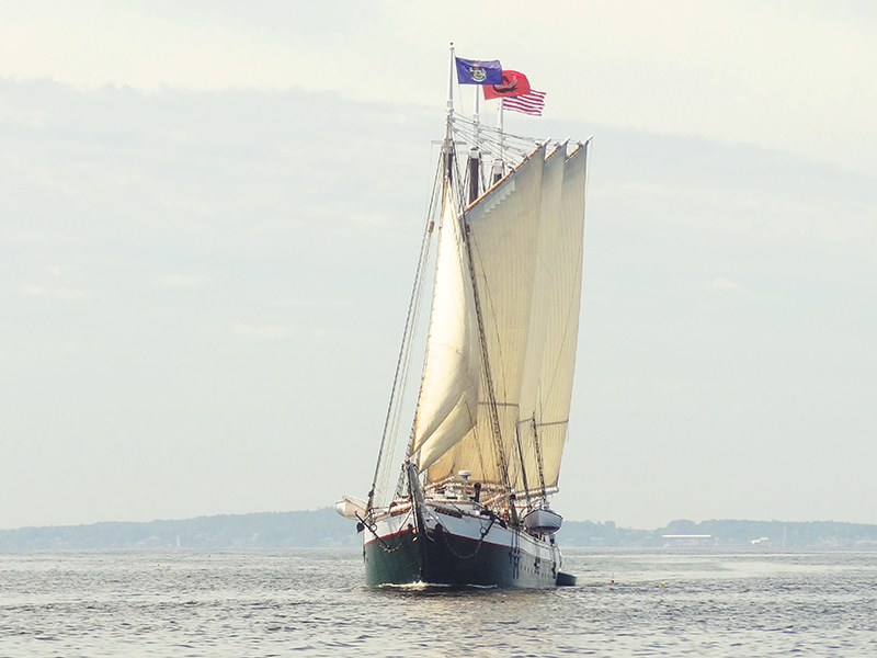 a hip under sail on windjammers in maine