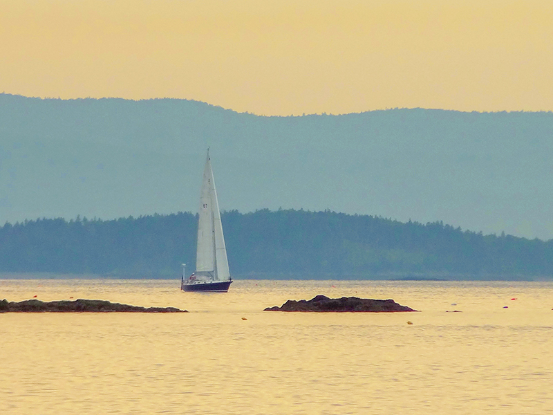 a sailing ship in the evening