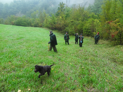 Outside Bologna in Italy - Truffle Hunting in Italy