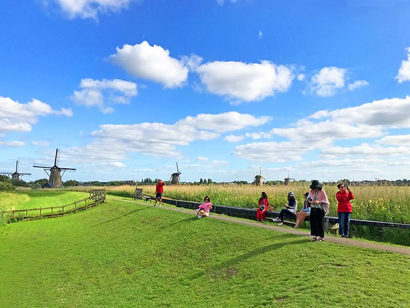 The fields of Kinderdijk