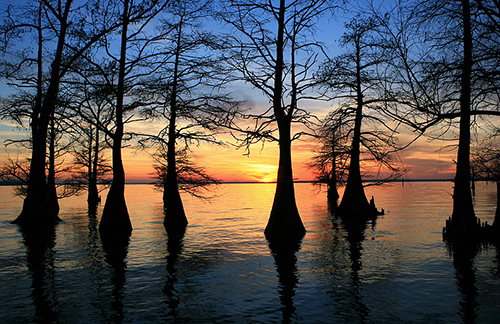 Sunset at Caddo Lake in Shreveport - things to do in Shreveport, LA