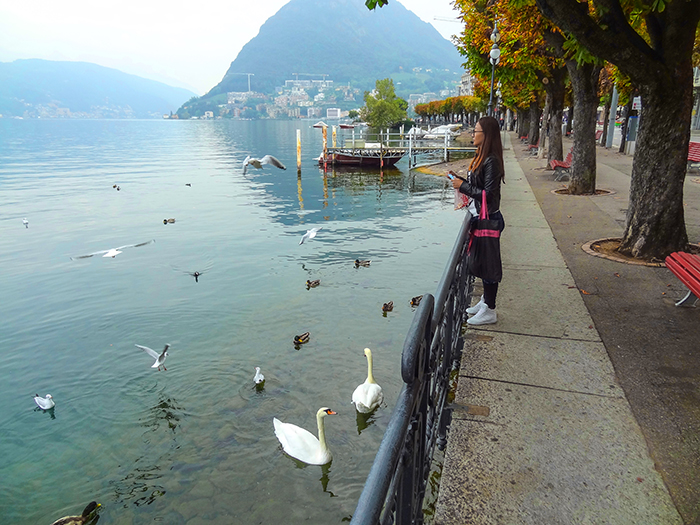 woman looking at swans on a lake, one of the best things to do in Lugano Switzerland