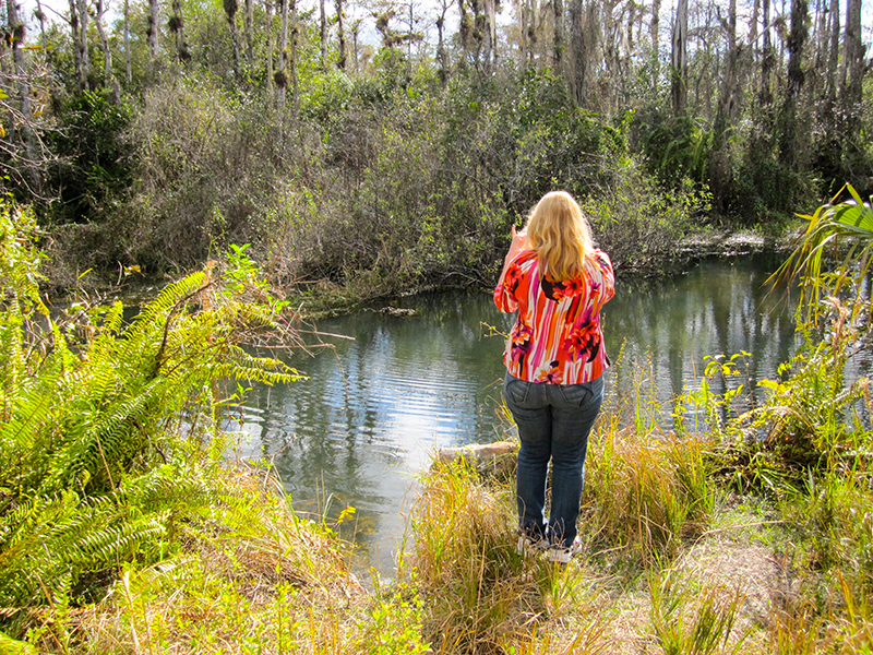 a woman in Floridas Everglades - Florida's Real Alligator Alley