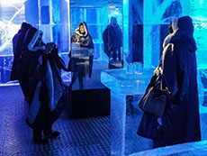 Ice Bar, Nordic Sea Hotel,