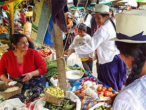 indian women in a market in Ecuador