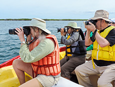 people taking photos from a boat on the Sea of Cortez