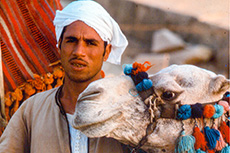 Arab man holding the bridal of a camel