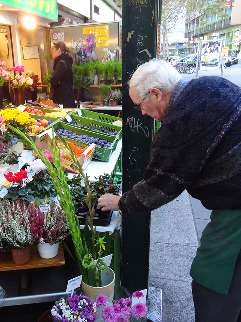 man looking at flowers in a market in Vienna
