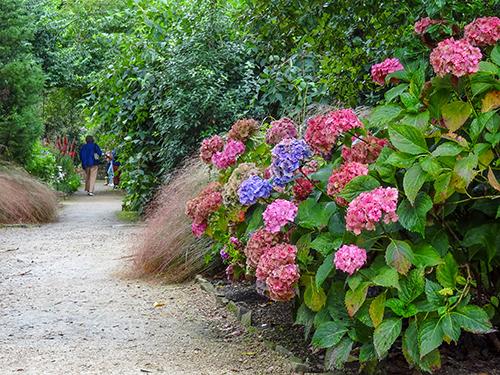 people walking through a garden in Ireland