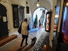 A woman walking a through the old town, one of the best things to do in Salzburg