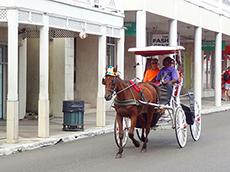 --horse + carriage--DSC04814---230