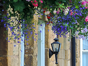 flowers hanging over an old lamppost in England