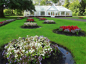 garden near a greenhouse