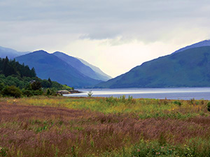 Later afternoon in the Highlands