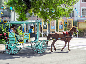 horsedrawn carriage in the Bahamas