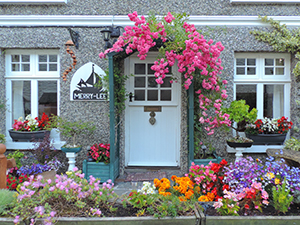 flowers on a house