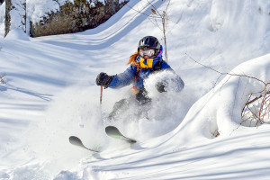 a skier in the Eastern Townships of Quebec