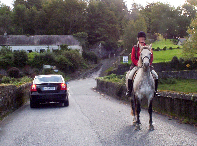 a horse and rider passing a car on a road
