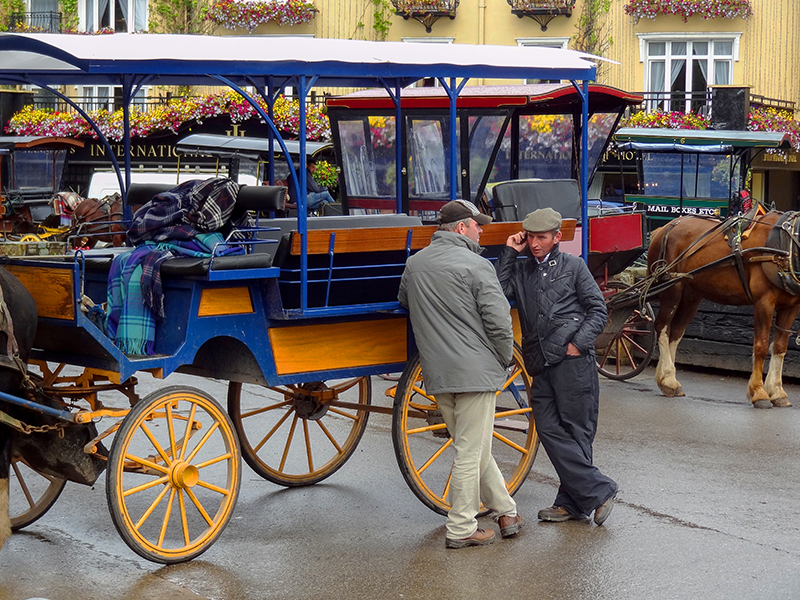 horse and carriages in Ireland