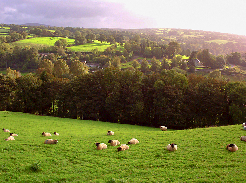 The Irish countryside, one of the best places to visit in Ireland