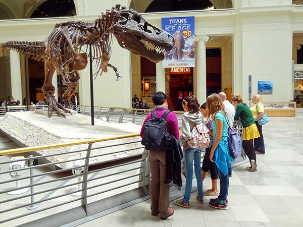 a museum exhibit in Chicago