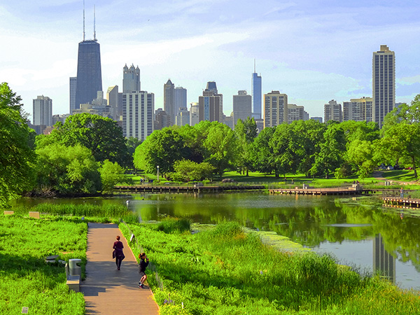a park near downtown in Chicago