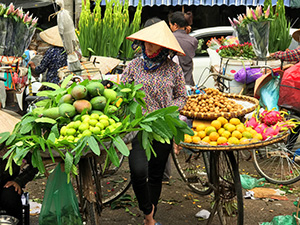 a woman street vendor seen during 2 days in Hanoi vietnam