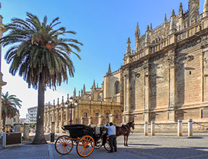 a horse and carriage in Seville