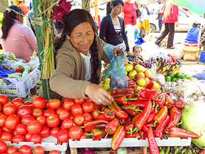 a woman in a market