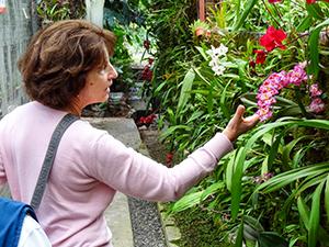 women looking at an orchid inside a church in Cuenca, Ecuador