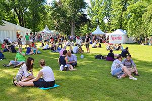 people having picnics on the grass