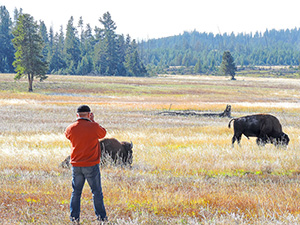 man photographing bison