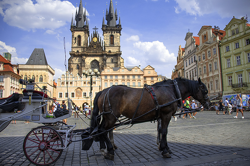 Old Town Square, the most popular spot on a walking tour of Prague