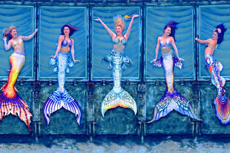 mermaids performing in the waters at Weeki Wachee Springs, among the most popular of Florida's freshwater springs