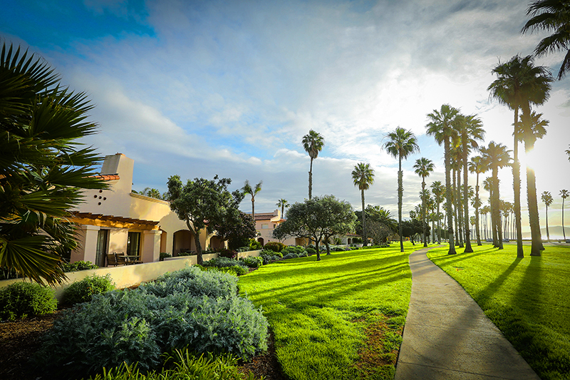 a park-like area with palm trees alongside one of the best hotels in Santa Barbara